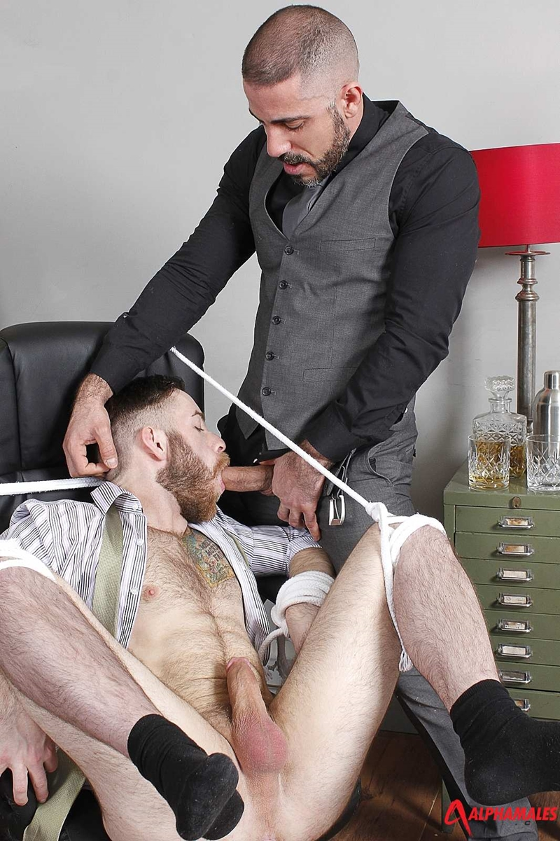 Alphamales-Michel-Rudin-boss-Alfie-Stone-suit-underwear-big-cock-fucked-cum-load-tight-hairy-ass-hole-wanks-012-tube-download-torrent-gallery-sexpics-photo